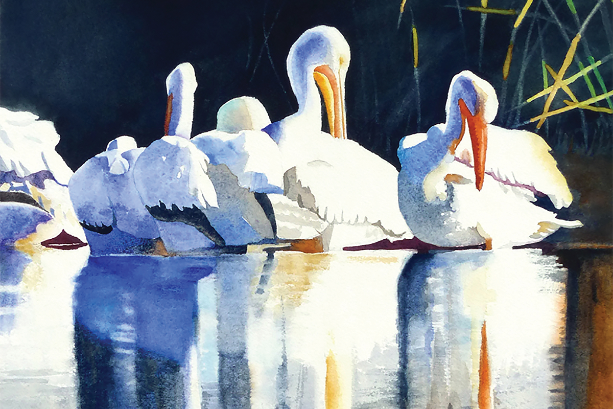 Pelicans at the Bosque by Jane Fritz