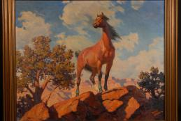Harold E. Bryant, Canyon Stallion